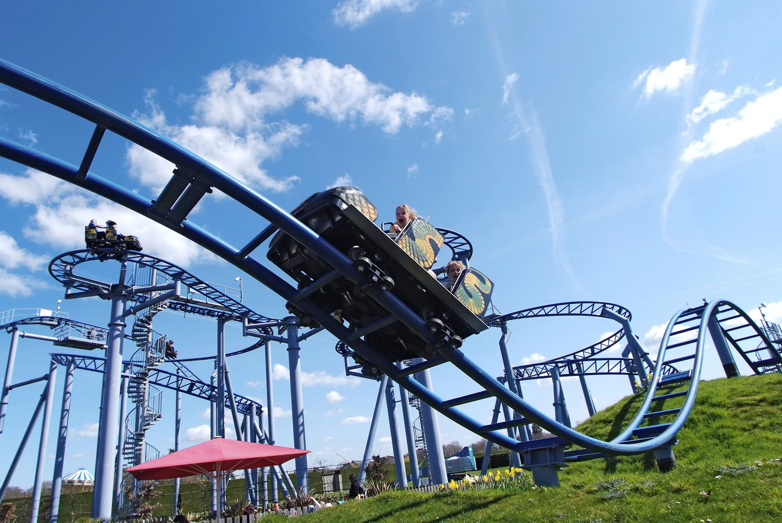 The Cobra at Paultons Park