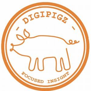 Digipigz - Focused Insight