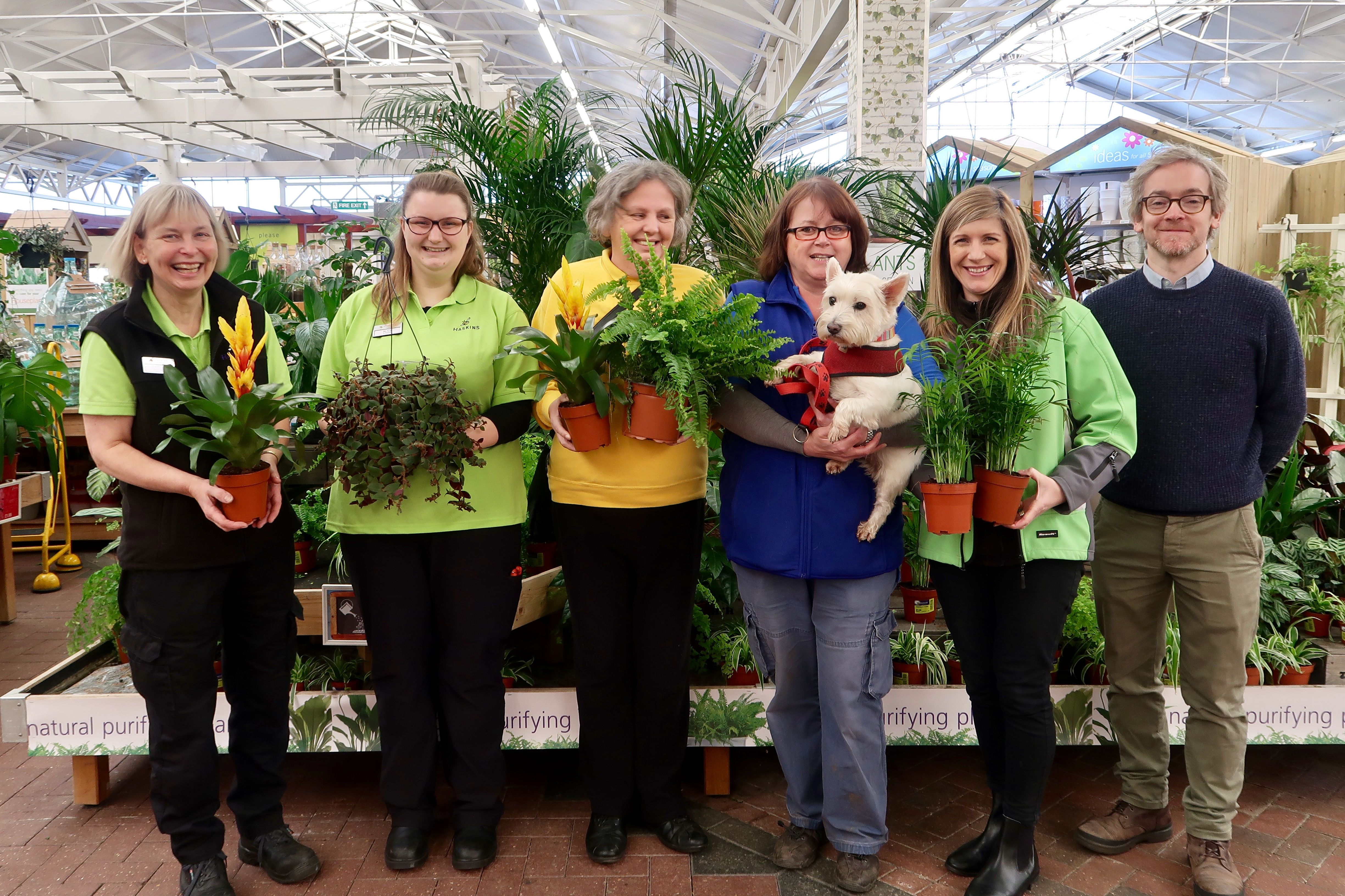 Haskins Garden Centre in Ferndown partners with Waggy Tails Rescue to donate houseplants
