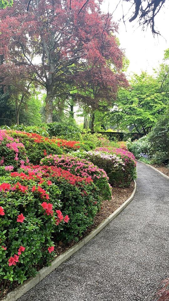 Paultons Garden